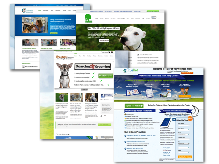 Veterinary Website Design Development