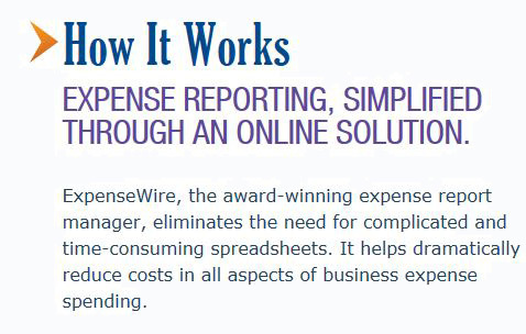 expense report manager, spreadsheets, reduce business expenses