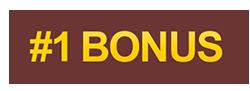 [d8e63f1b-bonus-1]