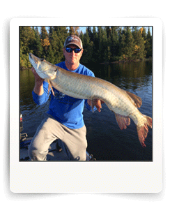 Cal Ritchie guides client to his first Eagle Lake Muskie near Vermilion Bay Ontario
