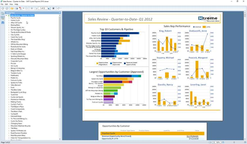 Full SAP Crystal Reports screenshot